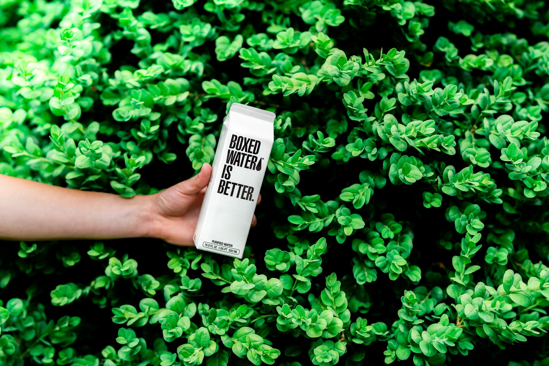 8 Eco-Friendly Packaging Tips For Dietary Supplement Companies